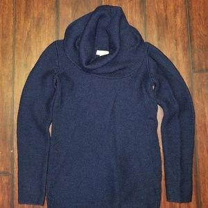 Banana Republic Navy Sweater